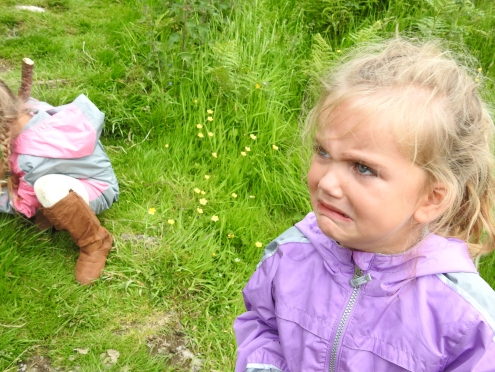 Discovering Stinging Nettle