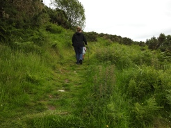 Hiking up the Sheep trail
