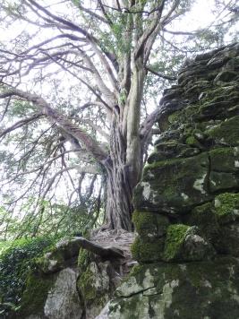 Druids Cave
