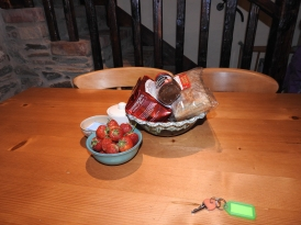 Fresh picked Strawberries, Tea, Coffee and Bread at House rental in Northern Ireland