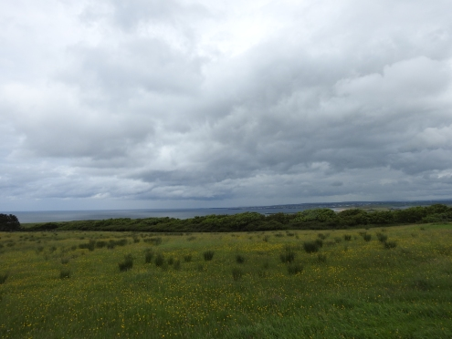 View from Downhill Demesne