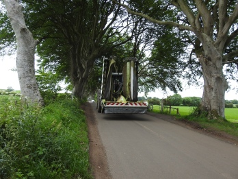 Tractor driving down the road, The Dark Hedges
