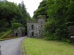 Castle Caldwell Forest, Boa Island Northern Ireland