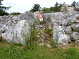Creevykeel Court Tomb