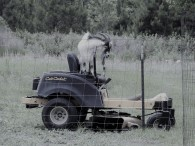 If only he would Mow!!!