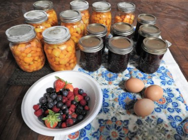 """Diced """"Purple Carrots, Blackberry Jam, Fresh picked berries and fresh eggs from Happy Hens!"""